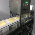 margarine processing technology